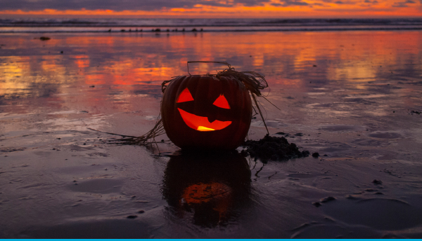 October Web Special