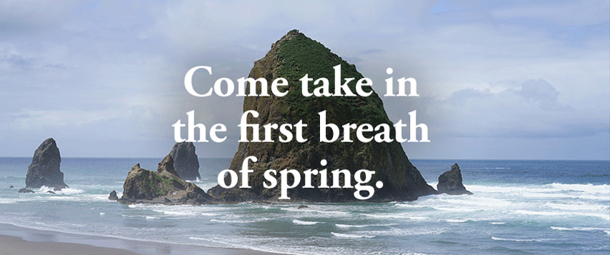 Come take in the first breath of spring.