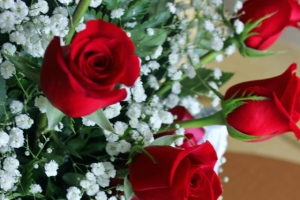 Newport Bouquet Package