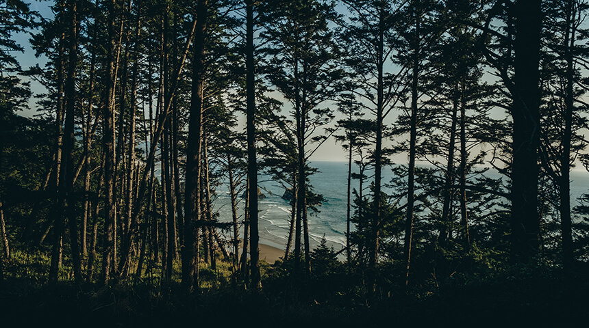 Coastal hiking view