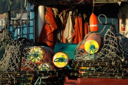 crab pots newport
