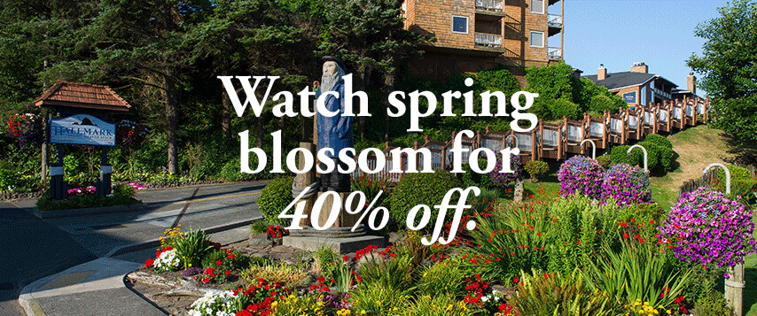 Watch spring blossum for 40% off