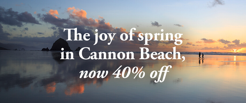 The joy of spring in Cannon Beach, now 40% off
