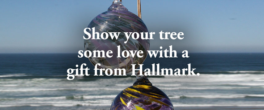 Show your tree som love with a gift from Hallmark